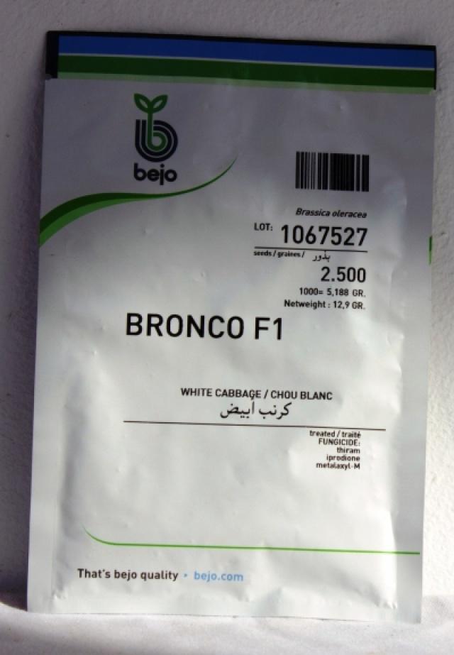 BRONCO F1 Choux Cabus